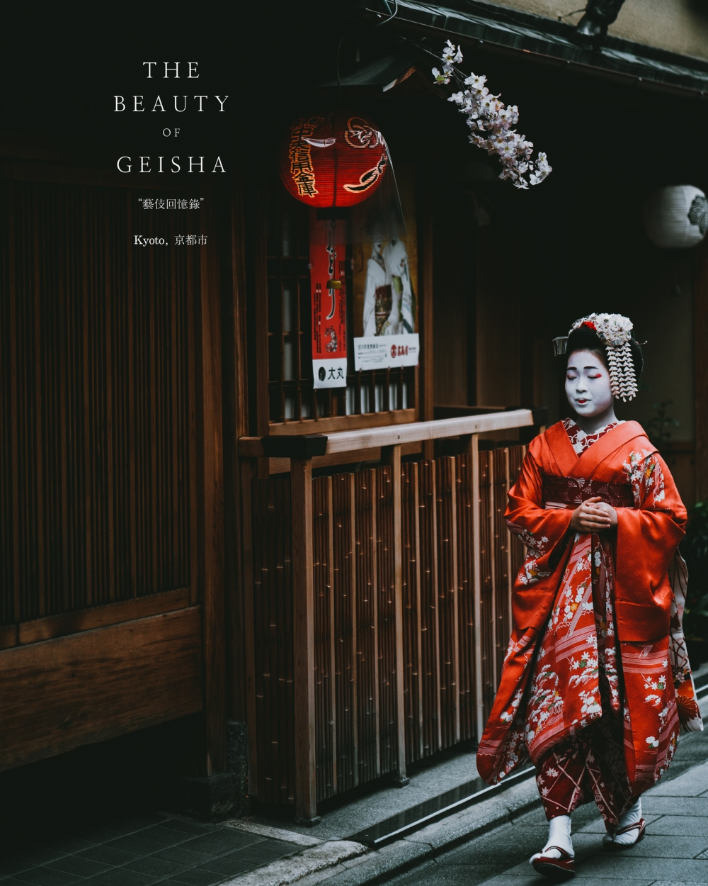 Memories of Geisha-2